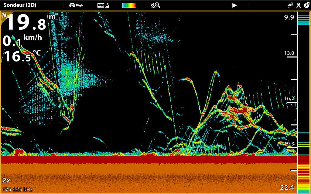 snp1018172007.jpg