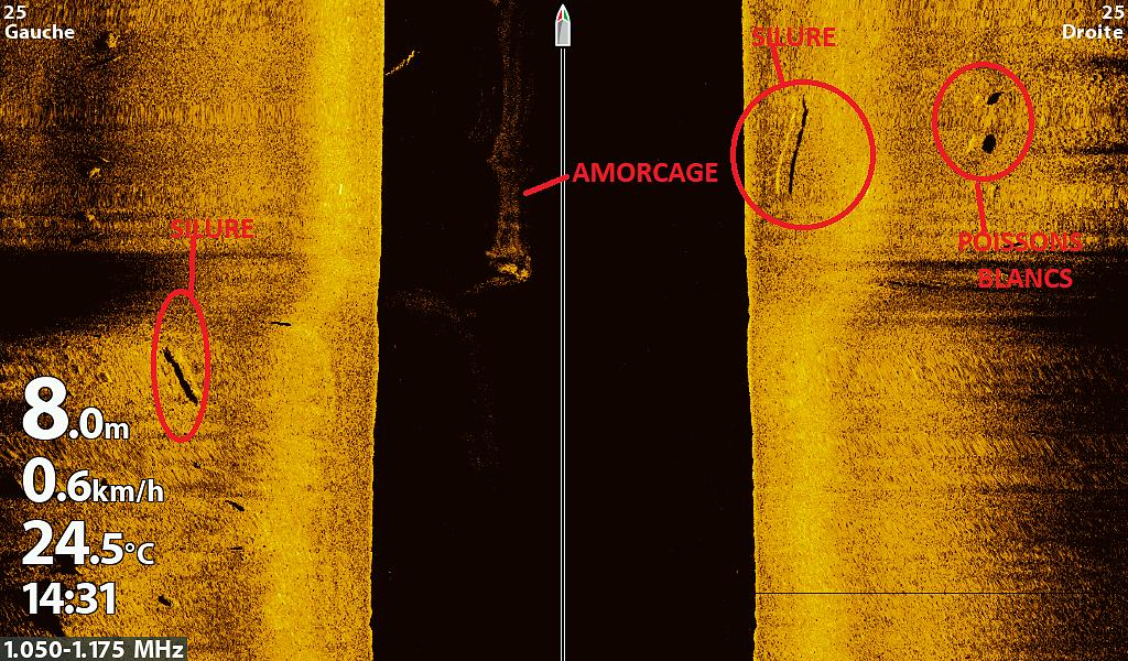 Méga Side Imaging 1