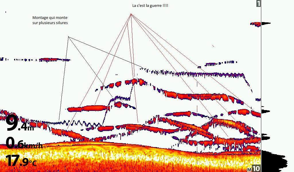 Pêcheur de Sardines